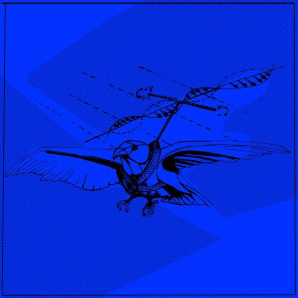 Dronic Falcon